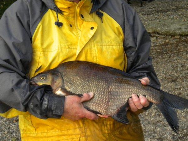 Fishing in Carrigallen Co Leitirm