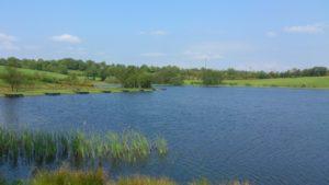 Town Lake, Carrigallen